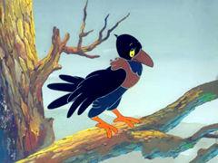 《乌鸦为什么是黑的》高清在线观看